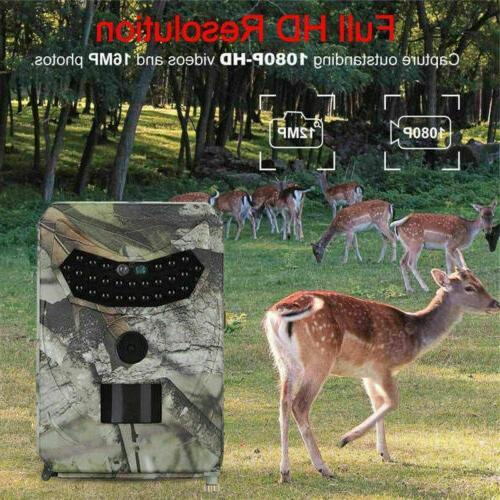 HD 1080P Camera Wildlife Scouting Cam