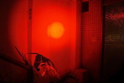 Pen Light Flashlight Night Vision Camping