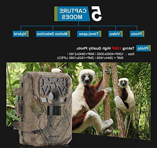 Trail Game Camera IR LEDs Image 1080p Video 75feet Distance LCD Screen /